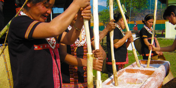 Idu Mishmi Ladies pounding rice in traditional way, Mishmi Hills, India