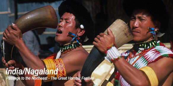 Angami men drinking Rice Beer from Buffalo Horns, Nagaland